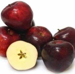 00052-red-chief-campbell-delicious-alma-gyumolcsfavasarlas-250x Gyümölcsfa vásárlás főoldal Gyümölcsfa Vásárlás